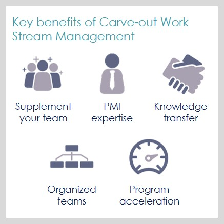 Carve-out Work Stream Management 1