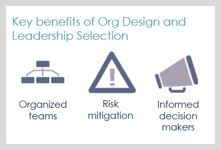 Organization Design & Leadership Selection 1